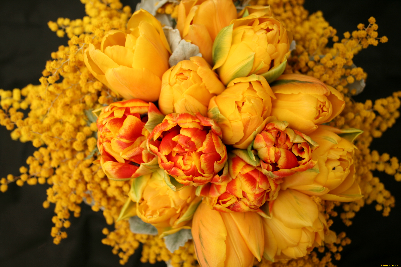 идеи фото красивых букетов мимозы и тюльпанов фасонов бывают